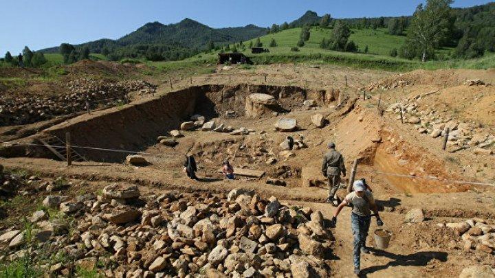 Ученые нашли подтверждения, что люди появились в Сибири 800 тысяч лет назад