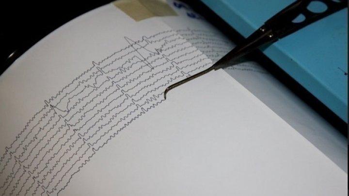 У берегов Камчатки произошло землетрясение магнитудой 4,6