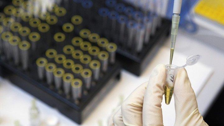 Петербургские генетики помогли следователям в розыске маньяка
