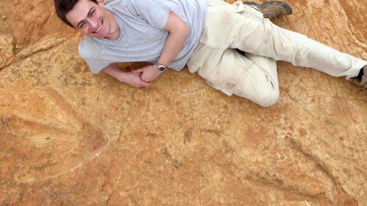 В Африке найдены следы девятиметрового хищника