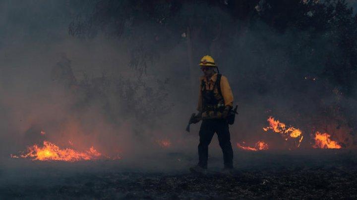 Калифорнийский полицейский снял лесной пожар изнутри