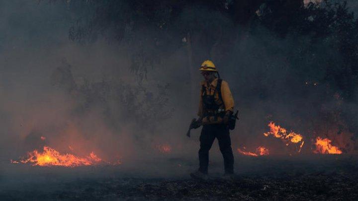 Количество жертв природных пожаров вКалифорнии выросло до  17 человек