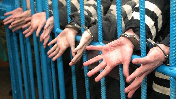 Американским подросткам в костюмах кустов, пугавших прохожих в парке, грозит тюрьма