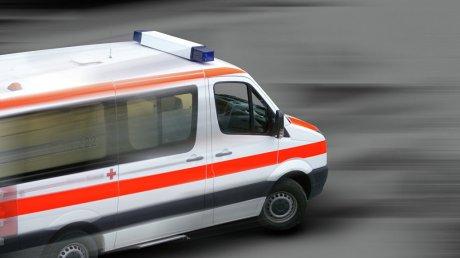 В Египте перевернулся микроавтобус, погибли трое