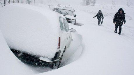 """Первый снег во Владивостоке превратился в """"апокалипсис"""""""
