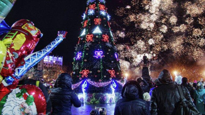 В Токио угря научили вырабатывать энергию для подсветки елки
