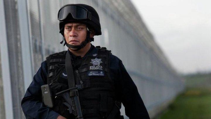 В Мексике зарегистрировано рекордное количество убийств
