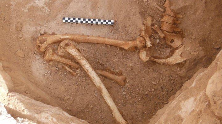 Найденный в копях царя Соломона женский скелет удивил археологов