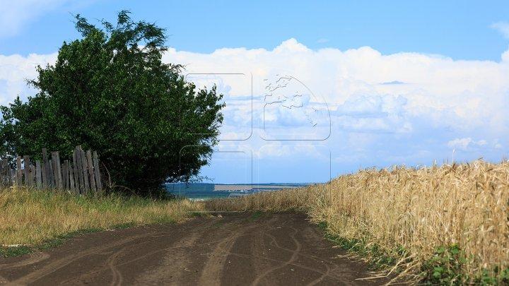 Фермеры из Дубоссар получат доступ, к собственным земельным участкам