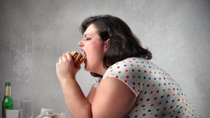 Учёные нашли главную причину ожирения