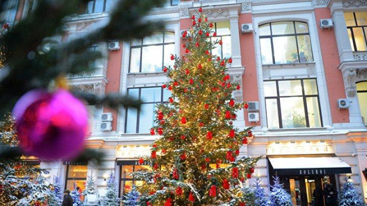 Москву украсили елки от дизайнеров Юдашкина, Чапурина, Сергеенко