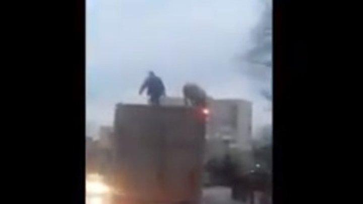 Под Киевом мужчина вступил всхватку сосвиньёй накрыше фургона