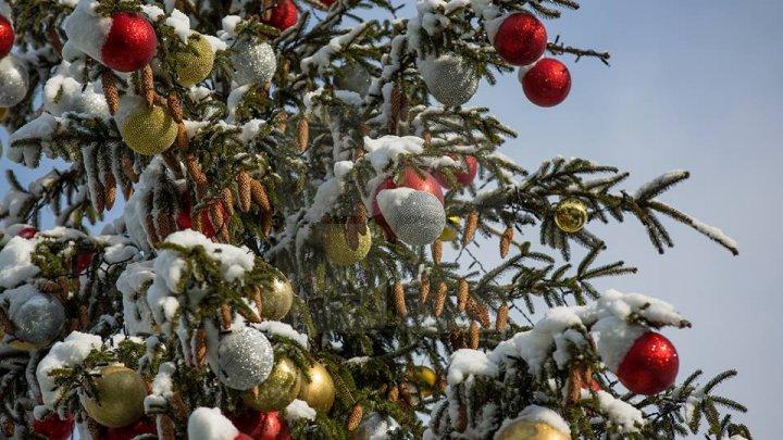 Рождественскую ярмарку показали на фото после первого снегопада