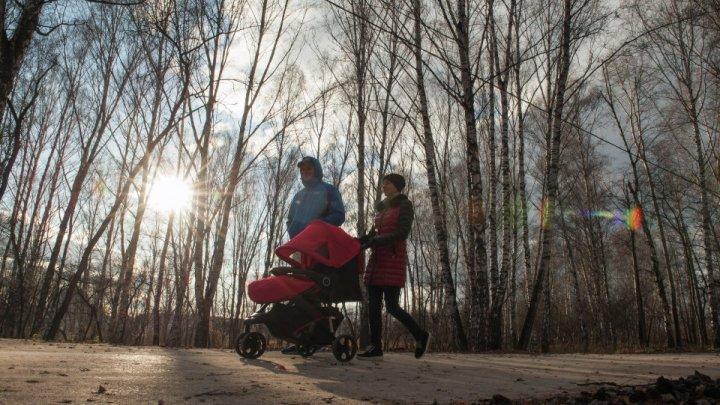 Молодую пару ударило током в комнате матери и ребёнка под Москвой