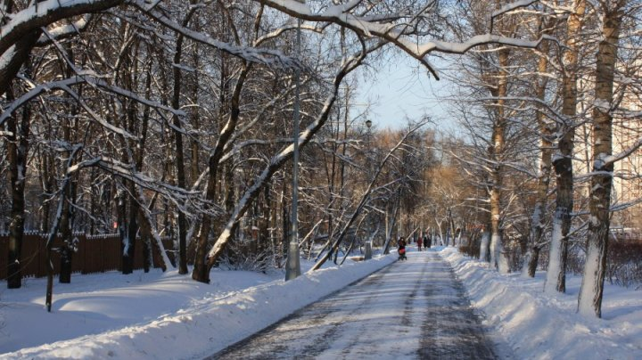 В московском парке нашли тело юноши с замотанной в пленку головой