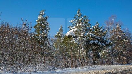 Прогноз погоды на 21 января