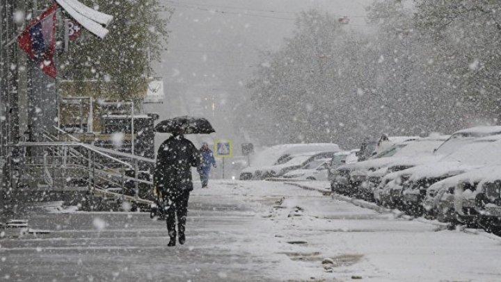 Из-за снегопада в Москве задержаны и отменены десятки рейсов