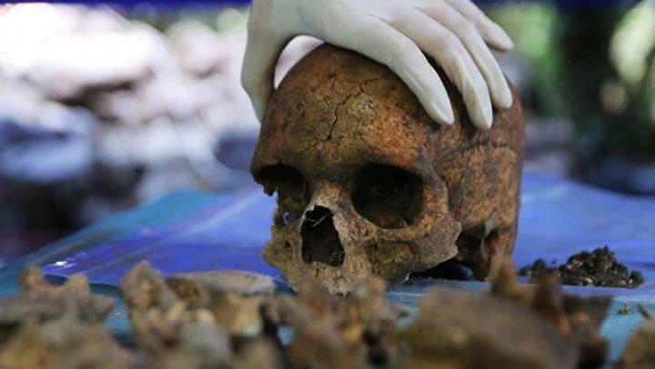 Учёные признали фрагмент челюсти человека в Израиле самой древней находкой