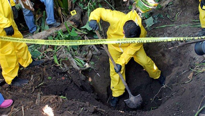 За год в мексиканском штате Веракрус нашли более 340 тайных могил