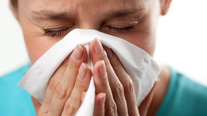 Учёные нашли способ предотвратить появление аллергии