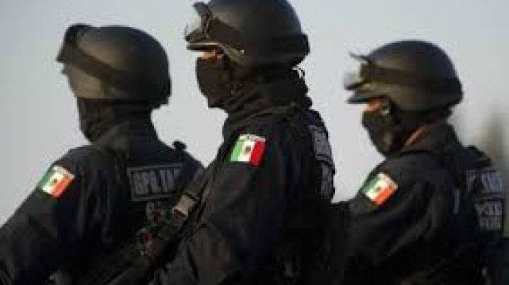 Бойня в Мексике: 15 человек убиты за один день