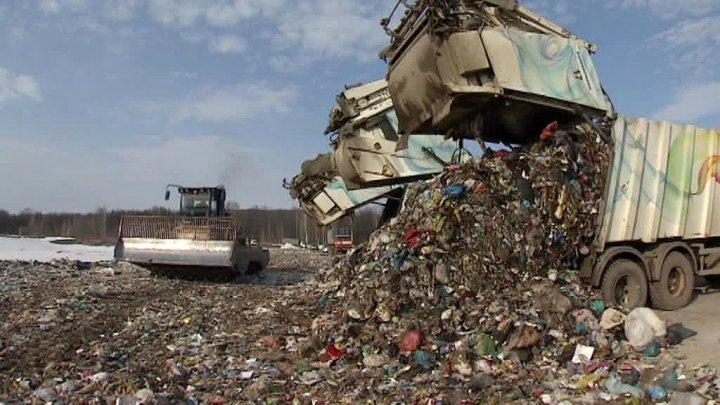 В Чехии бомжа едва не сдали на мусоропереработку