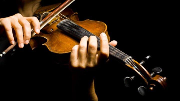 Ломбард купил скрипку в тысячу раз дешевле, чем она стоит, и вернул её хозяйке
