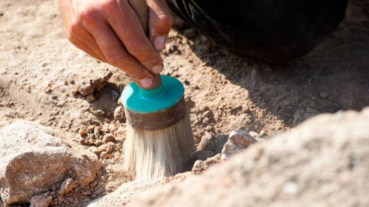 Каменные инструменты, найденные в Индии, изменят взгляд на ранние миграции человека