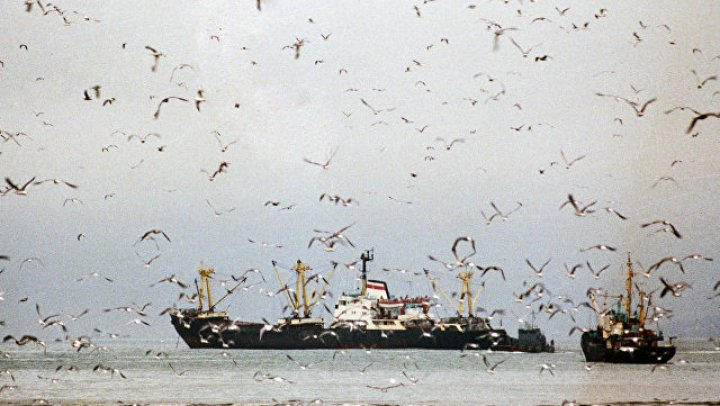 Аргентинские моряки обстреляли китайское рыболовецкое судно