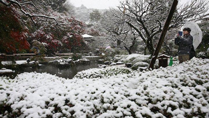 В Японии четыре человека погибли в результате снегопадов