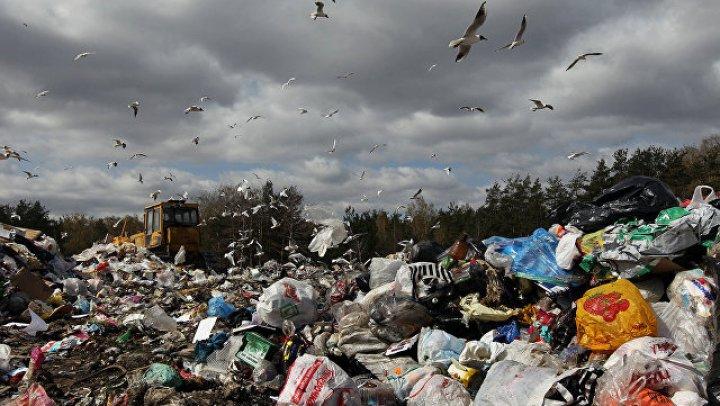 """В Мозамбике 17 человек погибли под гигантской мусорной """"лавиной"""""""