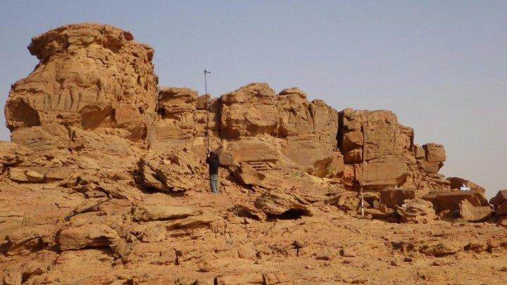 В Аравии нашли древнейшие скальные изображения верблюдов в полный рост