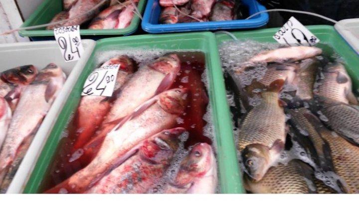 Жителей Молдовы призывают быть внимательней при покупке рыбы