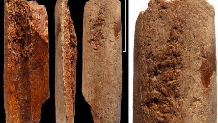 Археологи нашли в Китае инструменты из кости возрастом 115 000 лет