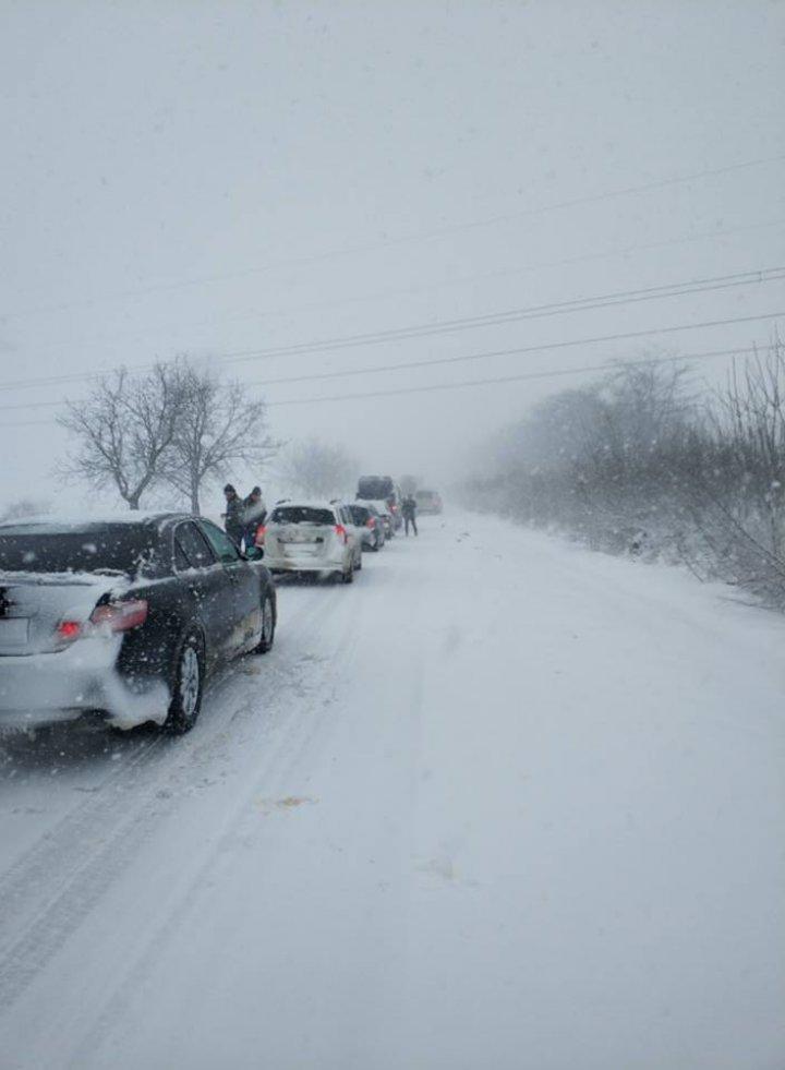 «Заметает на глазах»: десятки машин заблокированы в Каушанском районе (фото)