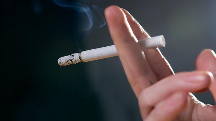 В аэропорту Шереметьево намерены вернуть места для курения