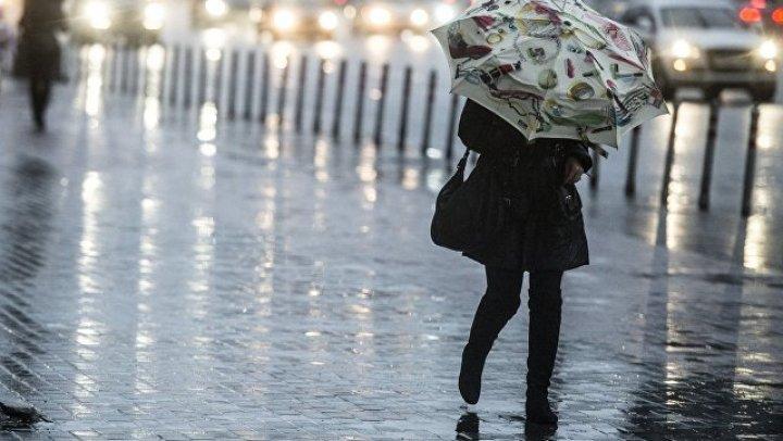 МЧС предупредило москвичей об усилении ветра и дождя