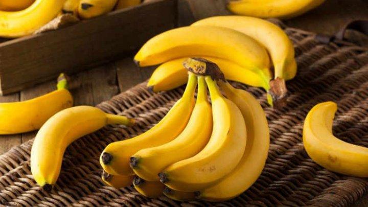 В Испании накрыли крупнейшую в Европе партию кокаина, спрятанного в бананах