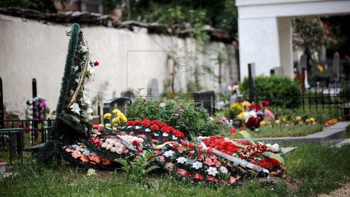 Почему экологи рекомендуют отказаться от пластиковых цветов на кладбищах
