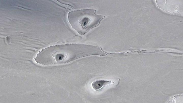 Ученые не могут объяснить странные дыры во льдах Арктики