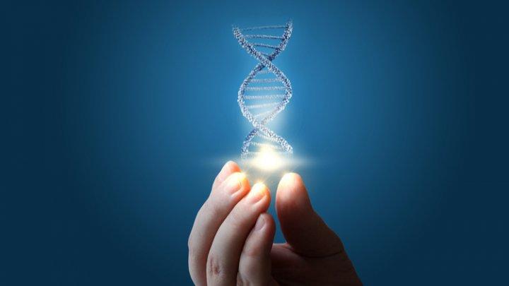 В Эстонии создадут биобанк, где будут храниться образцы ДНК каждого жителя страны