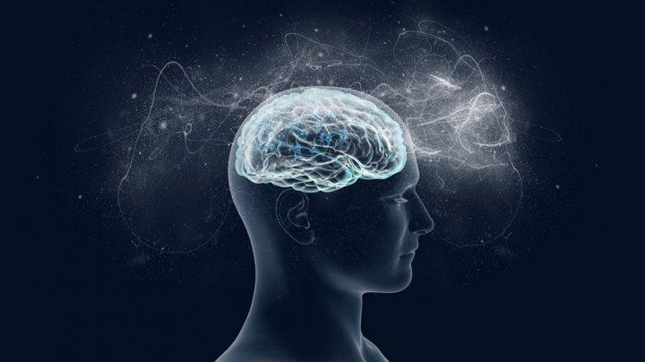 Способность мозга продуцировать новые нейроны почти не зависит от возраста
