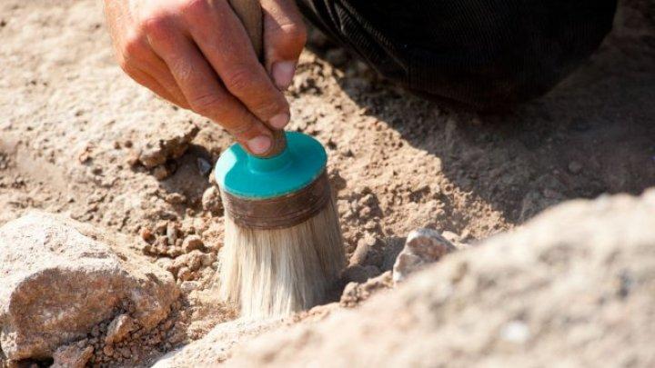 В Китае нашли музыкальные инструменты возрастом 4 000 лет