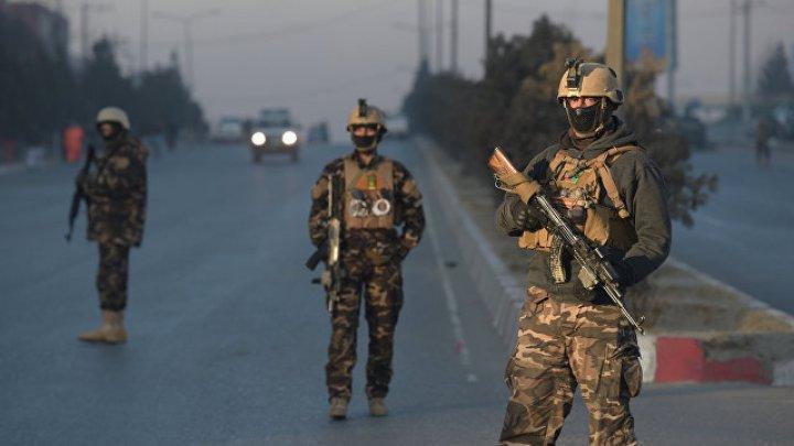 """В Афганистане уничтожили около 300 боевиков """"Талибана"""""""