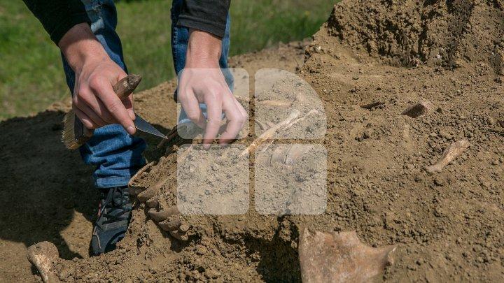 Поселение позднего римского периода обнаружили в Чимишлийском районе