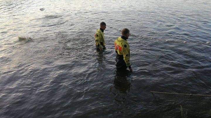Найдены тела трех братьев, утонувших в озере в Оргеевском районе (фото)