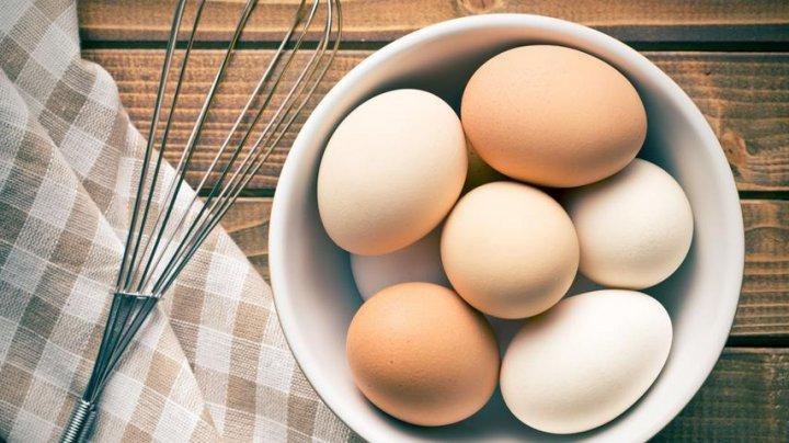 """Учёные рассказали, от каких заболеваний спасает """"яичная диета"""""""