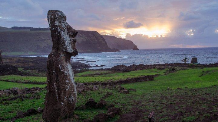"""Ученые разгадали секрет установки """"шляп"""" на истуканах с острова Пасхи"""