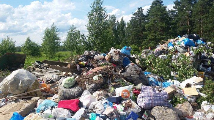 Труп младенца нашли среди отходов в московской компании по сортировке мусора