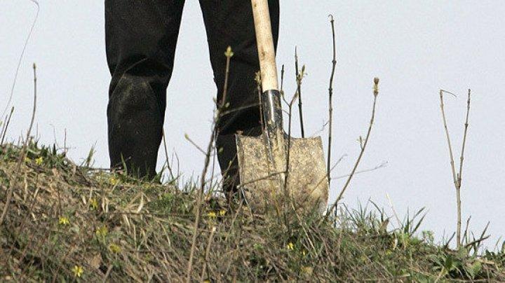 В Челябинске пьяных водителей заставили прибирать могилы